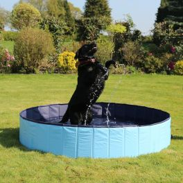Rosewood Cool Down Large Foldable Dog Pool