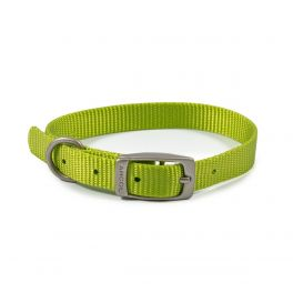 Ancol Viva Buckle Dog Collar Lime Green