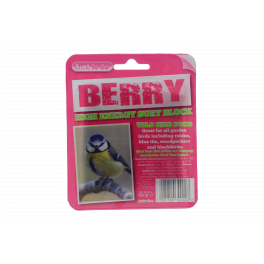 Suet To Go High Energy Suet Block Berry Wild Bird Treats 320g