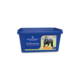 Dodson & Horrell Echinacea Horse Supplement 1kg