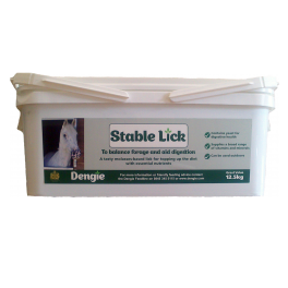 Dengie Stable Horse Lick 12.5kg