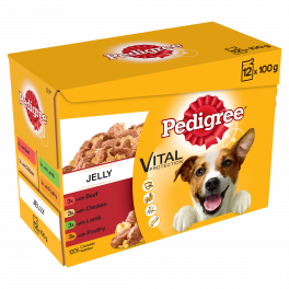 Pedigree Mixed Variety Wet Adult Dog Food Pouches in Jelly 12 x 100g