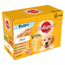 Pedigree Mixed Variety Wet Puppy Food Pouches in Jelly 12 x 100g