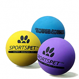 Sportspet Tough Bounce Single Ball Dog Toy