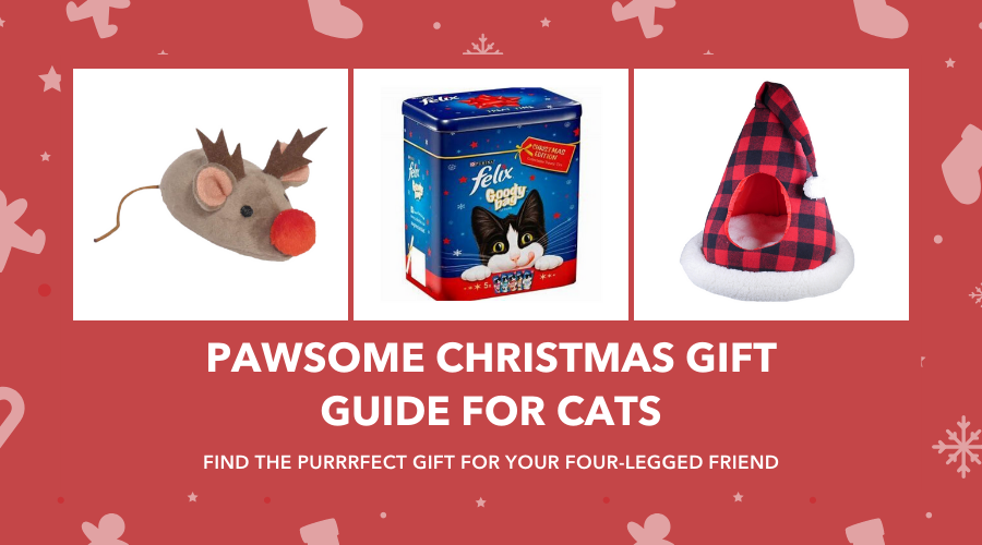 Pawsome Christmas Gift Guide for Cats 2019