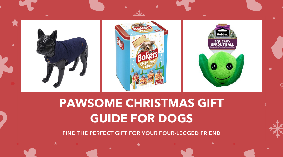 Pawsome Christmas Gift Guide for Dogs 2019